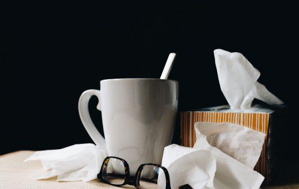 seasonal flu prevention